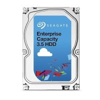 Seagate Enterprise Capacity 4Tb ST4000NM0035